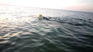 Керчь. Азовское море. Сентябрь 2009. Я.
