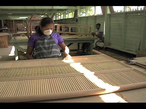 Making Sustainable Furniture in Guyana