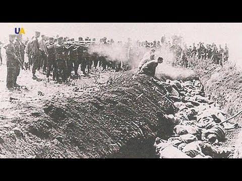 Стреляли немцы, а раздевали за минуту догола местные жители: Бабий Яр глазами немецкого шофера