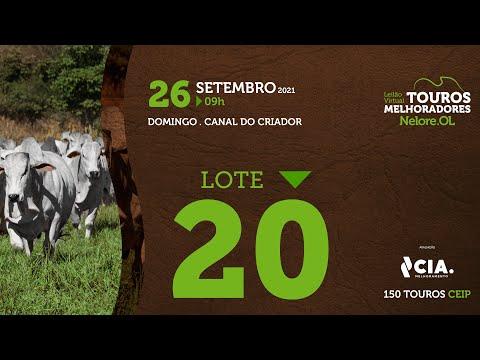 LOTE 20 - LEILÃO VIRTUAL DE TOUROS 2021 NELORE OL - CEIP
