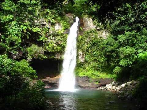 Tavoro River Waterfalls Walk First Water Fall Swimming Lagoon Bouma Park Taveuni Island Fiji