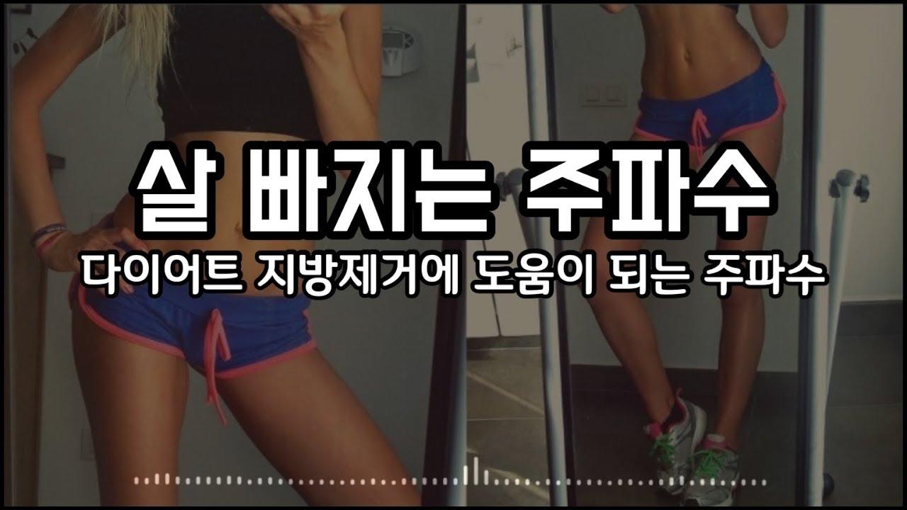 [다이어트] 살 빠지는 주파수 🔥 지방을 활활 태우기 ver.2