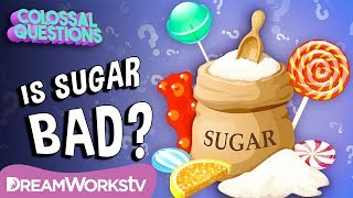 Is Sugar Bad For You? | COLOSSAL QUESTIONS