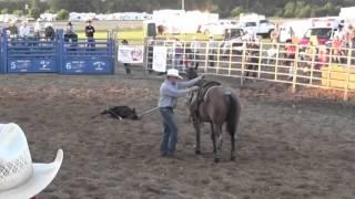 Calf Horse For Sale- Peptos Irish Whiskey