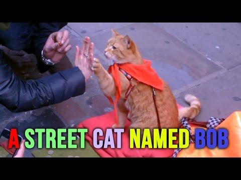 A Street Cat Named Bob ( Early, Rare Street Footage )