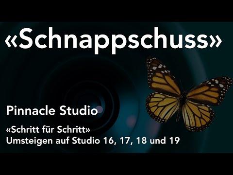Schnappschuss bzw. Standbild in Pinnacle Studio  - Umsteigen auf Studio 16, 17, 18 und 19
