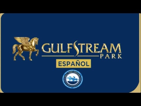 Gulfstream Park Live Stream - YouTube