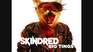 Skindred -  Saying It Now (Acoustic Version)