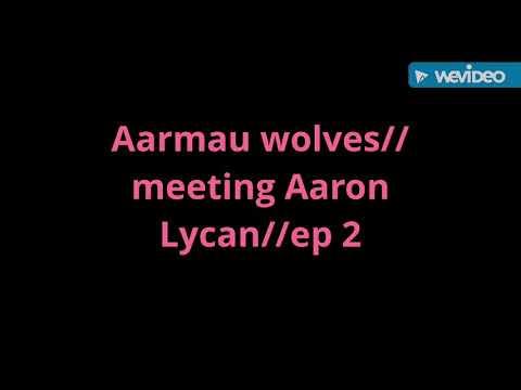 Aarmau wolves//meeting Aaron Lycan//ep 2