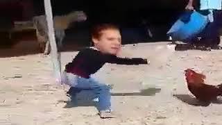 Nawaz Sharif Kaka and murgha fight
