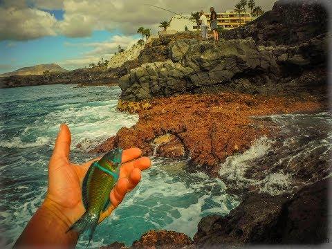 Tenerife , Light Rock Fishing .