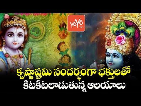 Krishnashtami Celebrations 2019 | Telangana News | AP News | Krishna Janmashtami | YOYO TV Channel
