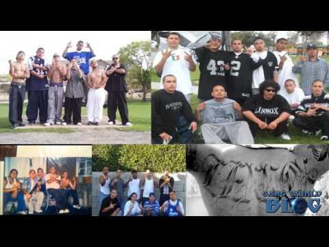 Varrio Lennox 13 Gang History (Los Angeles)