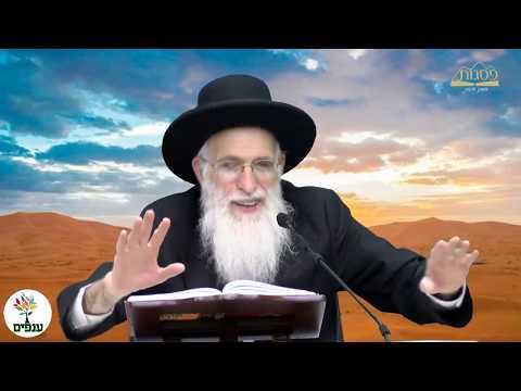 הרב יהודה יוספי - פרשת פנחס - שידור חי HD
