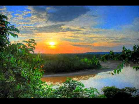 Natures Tranquility Amazon Rainforest Suite Youtube