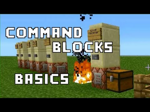how to give daily message for minecraft server command
