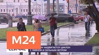 В понедельник в столицу вернется тепло - Москва 24