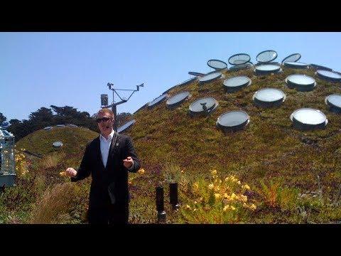 California Academy of Sciences Platinum Behind the Scenes Tour, San Francisco
