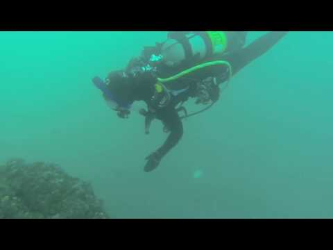 Oil Rig Diving with the Ascuba Venture dive leaders - Dive #1