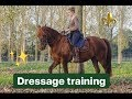 [DressageTraining] I call it magic when i'm with you!