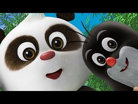 Вопрос: Кто все- таки панда, медведь или – енот, или кто еще?