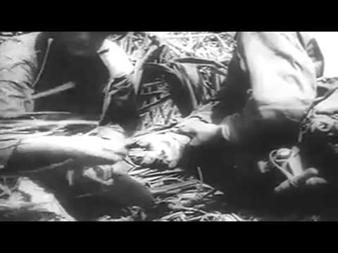 1944 Newsreel: New Films Of U.S. Victory In The Marshall Islands (full)