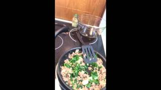 Easy, fast, healthy meals with ground turkey. Variety of recipes.