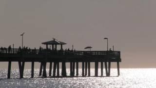 Dania Beach Fishing Pier | HD Background Video No. 9