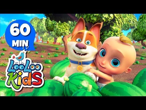 Down by the Bay 2 - Learn English with Songs for Children   LooLoo Kids