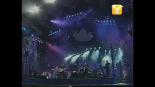 Creedence Clearwater Revisited, Have You Ever Seen The Rain, Festival de Viña 1999
