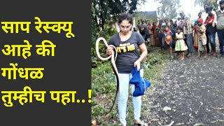 || धामण साप : बिनविषारी || Ratsnake rescue by Nirzara Chitti ||