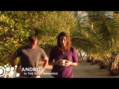 Andros Bahamas HD