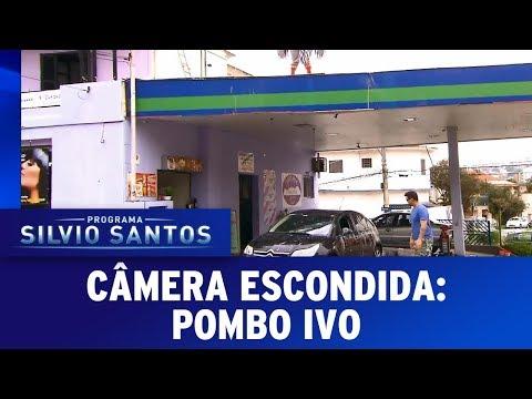 Pombo Ivo | Câmeras Escondidas (18/06/17)