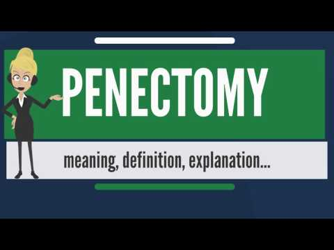 What is PENECTOMY? What does PENECTOMY mean? PENECTOMY meaning, definition & explanation