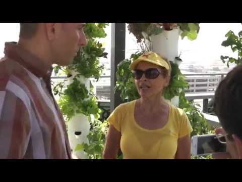 Farm Urbana's Rooftop Farming in Downtown L.A.