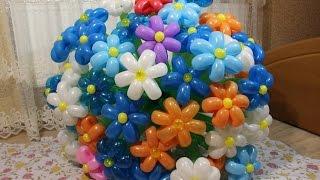Цветок ромашка из воздушных шаров шдм Flower of balloons