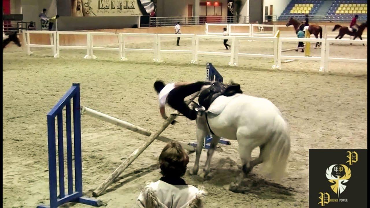funny horse fails - HD1512×862