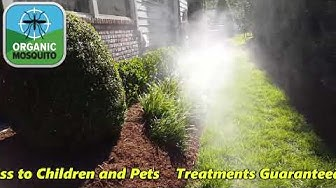 Natural Mosquito Control using Mosquito Barrier in Raleigh NC