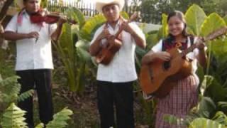 BANDA CORONITA DE TLANCHINOL HIDALGO: EL HUASTECO