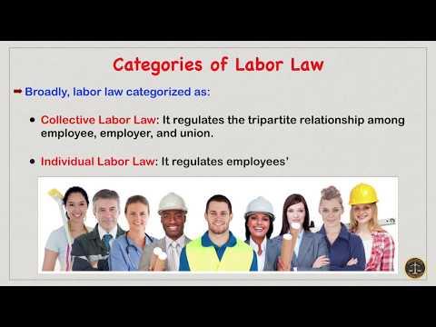 Labor Law in India