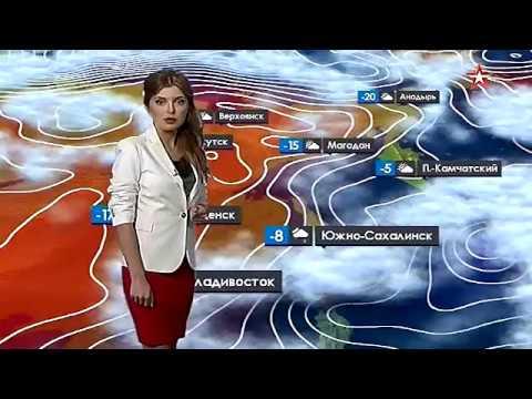 Погода в с м семеновка балашовского района