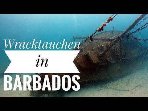 Wracktauchen im Carlisle Bay Marine Park (Barbados)