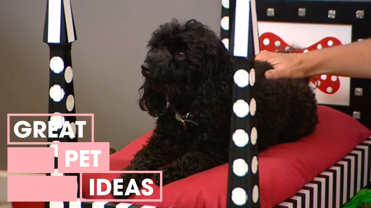 download how to make a diy dog bed pets great home ideas