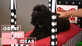 Decorating: How To Make A Dog Bed