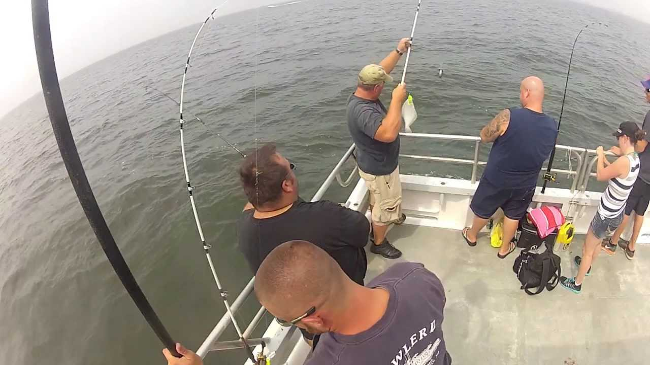 Fluke Fishing Sandy Hook Nj On The Prowler V Youtube