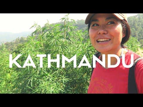 First Impressions KATHMANDU |CULTURE SHOCK NEPAL