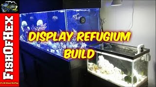 Building A Display Refugium | Subscribers Request