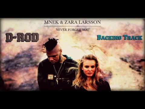 Zara Larsson & MNEK Never Forget You (Backing Track) Karaoke