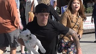 Stealing Dogs Prank - Stolen Dog Prank