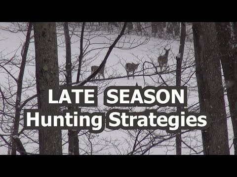 Late Season Hunting Strategies